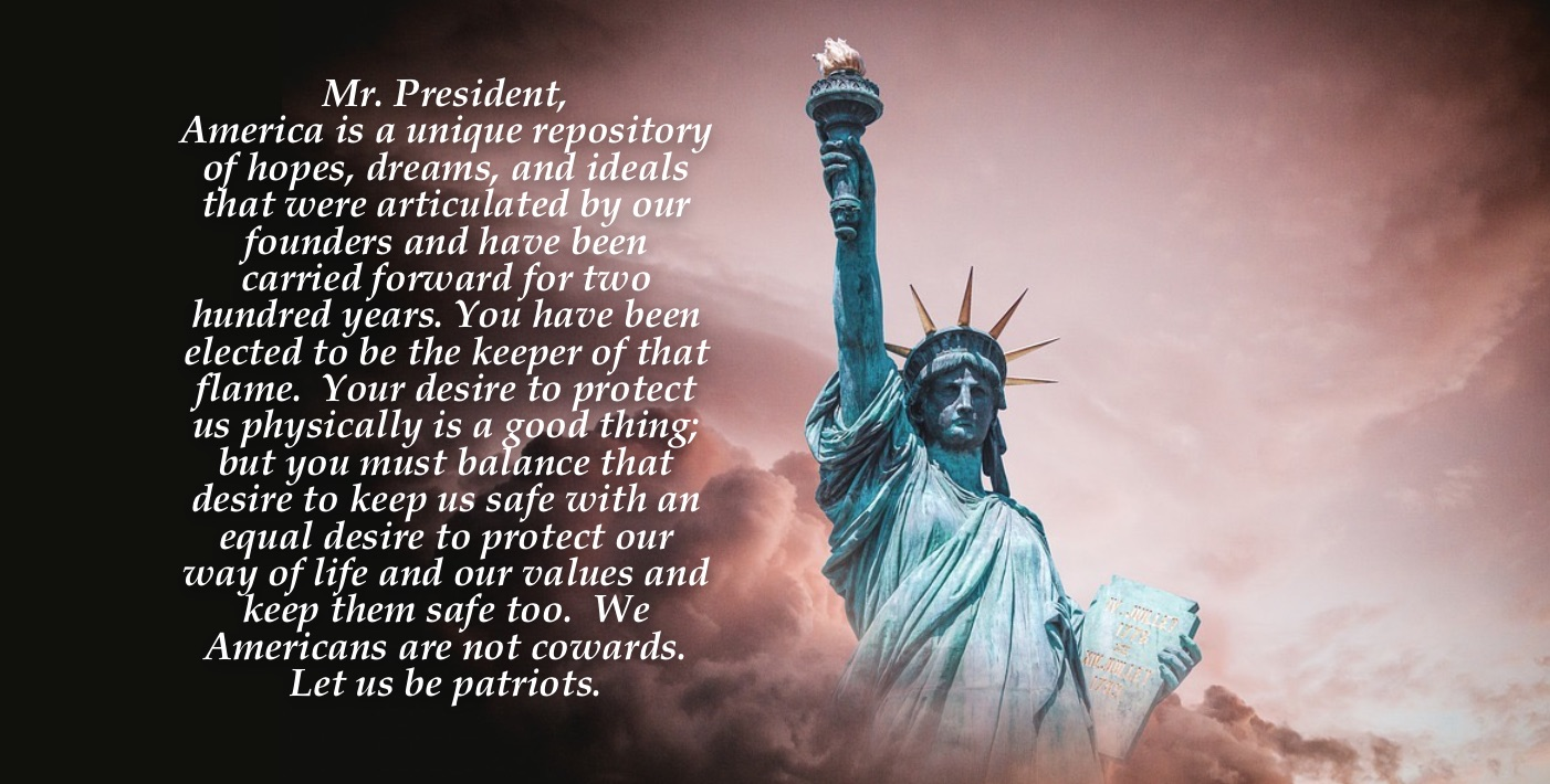 Dear President Trump:  Let Us Be Patriots