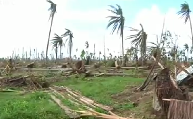 Video:  BBC Report on Typhoon Effect on Artisan Coconut Farmers
